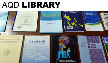 Books on display 1-15 Dec 2011