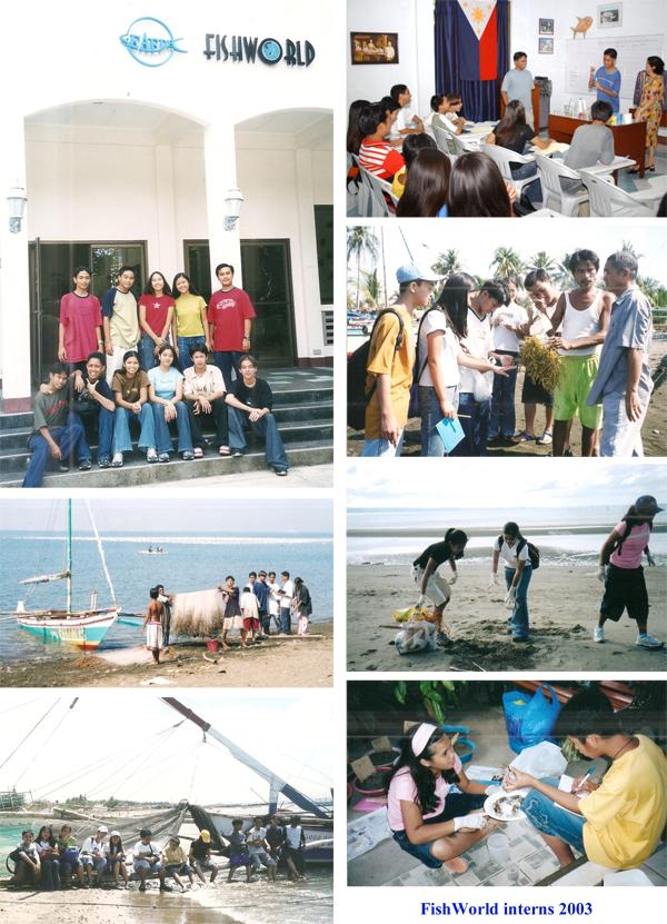 FW-Internship-2003