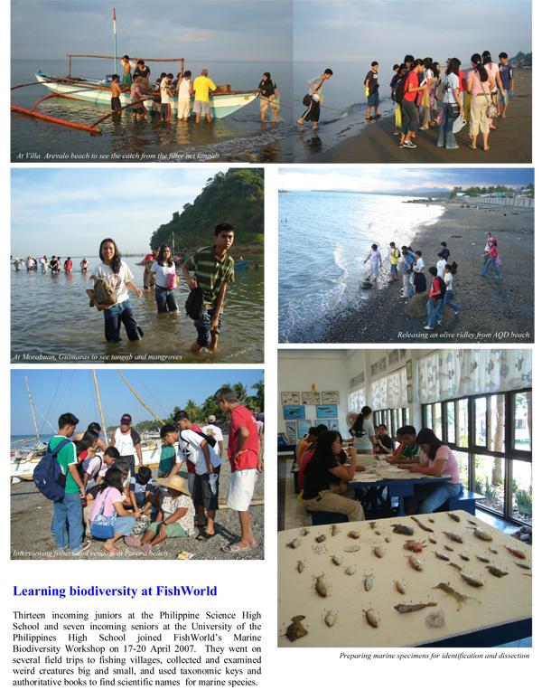 FW-Internship-2007