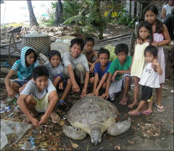 Work on endangered marine animals