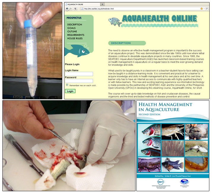 AQD's fish health R&D and information dissemination