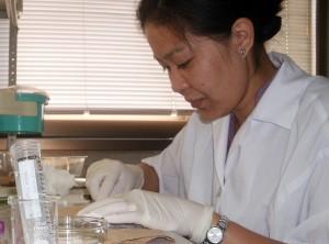 Ms. Tisuela at Hokkaido University