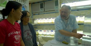 Dr. Arai at AQD's Natural food laboratory