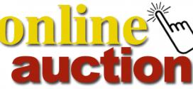 online benefit auction