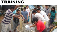 "<p><a href=""http://www.seafdec.org.ph/?p=5793"">2013 TRAINING</a> 