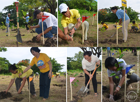 The AQD management group in full force during the tree planting activity
