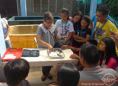 Dr. Emilia Quinitio explains the morphology of mud crab to the trainees