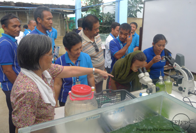 Ms. Milagros dela Peña teaches the trainees how to culture natural food