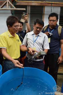 CAREFUL, CAREFUL! Engr. Emiliano V. Aralar explains to the trainees the proper monitoring and recording of water quality variables in land-based tanks of SEAFDEC/AQD's BFS