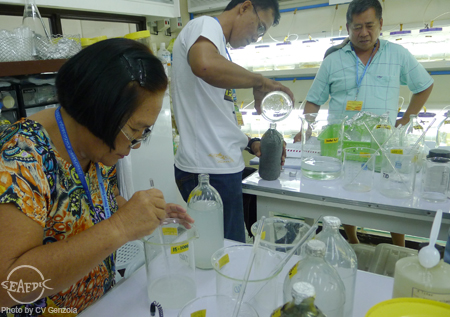 Trainees prepare culture media for microalgae production