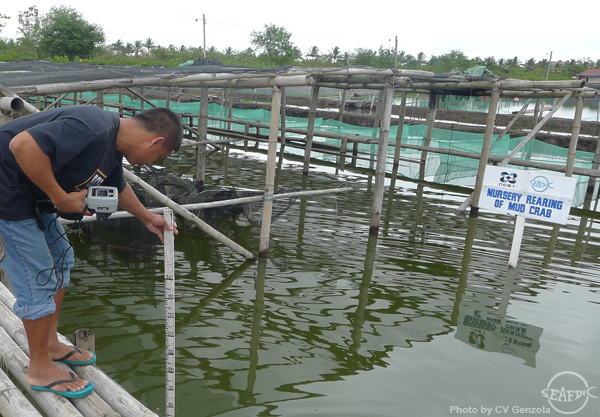 A trainee checks the water quality of the mud crab nursery pond