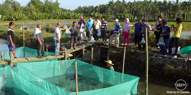 mudcrab training_caraga_coverphoto1