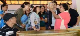 Panguil Bay Development Council delegates tour SEAFDEC/AQD facilities