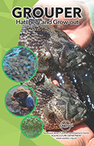 Grouper hatchery&grow-out thumbnail