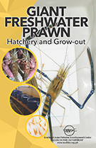 ulang hatchery-grow-out flyer thumbnail