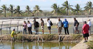 Palau visitors featured image