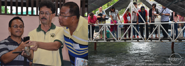 Guests at SEAFDEC/AQD's abalone hatchery (left) and integrated fish broodstock hatchery complex