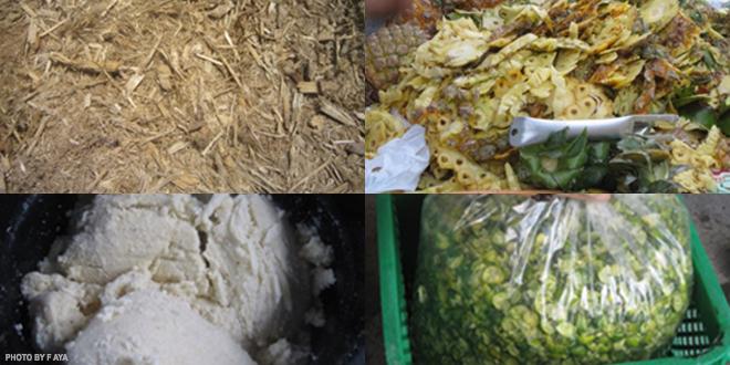 Fruit peels may no longer be agricultural wastes