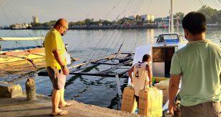 Shipment of milkfish fry